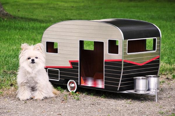 Blog Da Cdm Uma Casinha De Cachorro Diferente